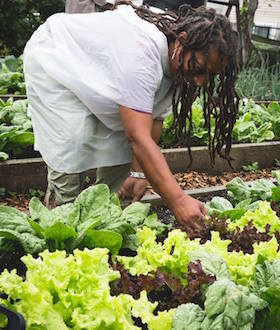Adrienne Spencer, Farm Manager of Wilmington Delaware-based E.D. Robinson Urban Farm  at 12th & Brandywine. Photo courtesy of E.D. Robinson Urban Farm.