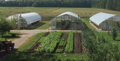 Clay-Bottom-Farm-lean-farmer