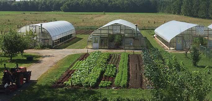 Q&A: 'Lean Farmer' Ben Hartman on Boosting Profits with Less Work