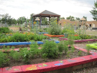The Fairmont School Garden, a part of the Denver Urban Garden network. Photo Credit: Denver Urban Garden