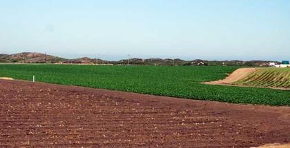 FarmlandAtMossLanding3600ppx4