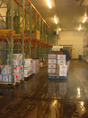 Food hubs are hubbubs of activity, with containers of produce arriving and departing constantly. Photo courtesy of Rich Pirog/MSU Center for Regional Food Systems)