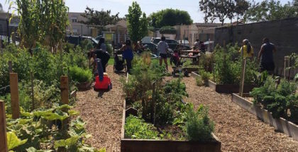 Los Angeles Community Garden Council