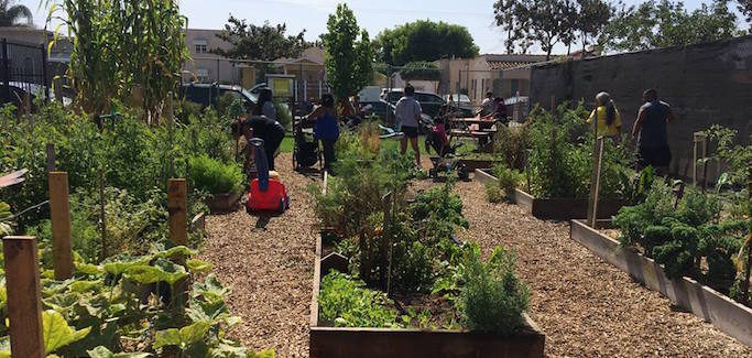Building Communities through Gardening