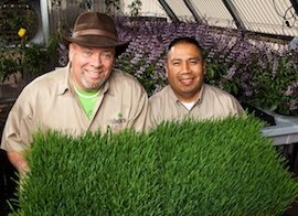 Mark Rhine and Marlo Ibanez, co-owners of Rhibafarms. Photo Credit: Rhibafarms.