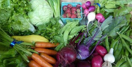 Rising-River-Farms-CSA-Basket