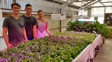 Students in Professor Valerie Loew's Horticulture class at Fullerton College in Orange County, CA. Photo courtesy of Fullerton College.