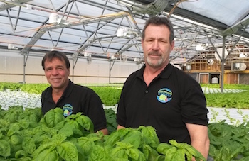 Partners David Hartshorn (left) and John Farr (right) of Waitsfield, VT-based Green Mountain Harvest Hydroponics. Photo courtesy of Green Mountain Harvest Hydroponics.