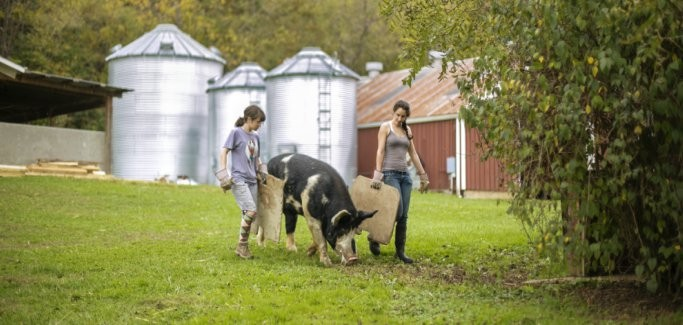 Growing on Campus: 9 College and University Farms Emphasizing Hands-On-Agriculture