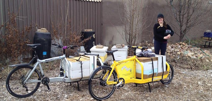 Urban Beekeeper Delivers Pollinators by Bike to Community Gardens Across Chicago