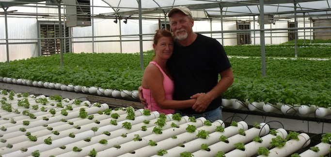 With Market for Local Hydroponic Produce about to Explode, Texas Family Farm Expands Operation