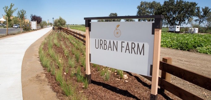 10 'Agrihoods' Growing Across the Country