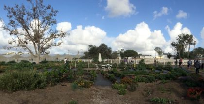 coastal roots farms san diego california urban farm