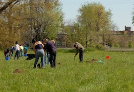 detroit urban farm ordinance 270