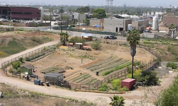 Farm Lot 59. Photo Courtesy: Farm Lot 59.