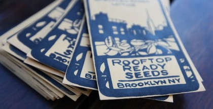 featured 683 rooftop ready seeds