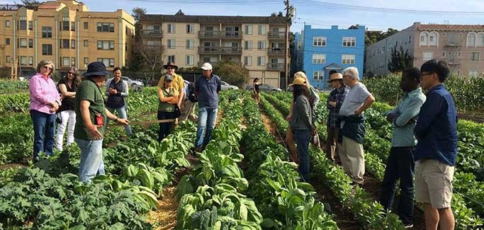 5 Organizations Dedicated to Addressing Food Equity