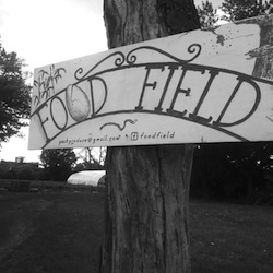 Photo Credit: Food Field.