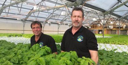 hartshorn-farm-hydronics-green-mountain-harvest-hydroponics-vermont