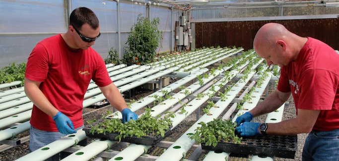 Sustainable Agriculture Institute Arms Returning Veterans with Tools to Become Farmers of the Future