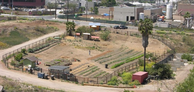 In March for Urban Farming, Farm Lot 59 Realizes Potential for Local Food Production in Long Beach