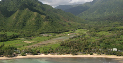 mahiai-matchup-hawaii-food-security