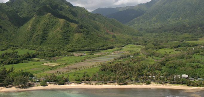 To Sure Up Island Food Security, Hawaii's 'Mahiai Match-Up' Competition Offers Farmers Land and Seed Money