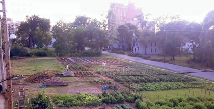 michigan urban farming initiative feature image