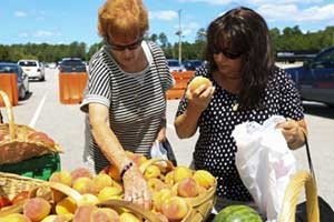 Emma MacMannis and Marianna Sheehan browse through baskets of fruit at the Onslow County Farmers' Market located at Marine Corps Base Camp Lejeune in North Carolina. (photo courtesy Zona Lewis/U.S. Department of Defense)