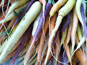 Locally-grown carrots from a farmers' market in Portland, Maine.   Source: City of Portland, Maine