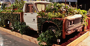 Crops for Clunkers. Designed for a garden show, now in a children's playground Photo credit: Hilary Dahl, all rights reserved to Seattle Urban Farm Company