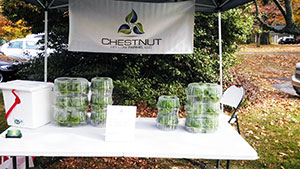 Chestnut Hollow sells hydroponic greens at farmers' market.   Photo credit: Harold Blackwell