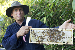 Robert from City Bees in San Francisco, California is currently paying back his Kiva Zip loan of $5,000 to support his small beekeeping business Photo courtesy of: Kiva Zip