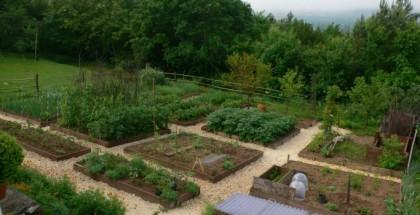 sample-garden