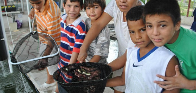 Nonprofit Combats Poverty in Orphanages by Teaching Aquaponics, Food Preservation