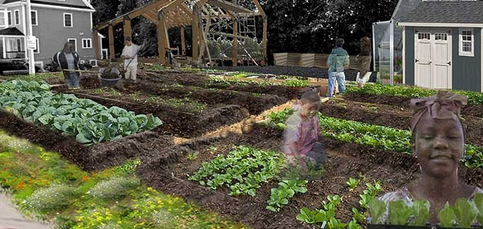 City of Boston Adopts Urban Ag Zoning Ordinance, Seeks to Build Equitable Farming Community