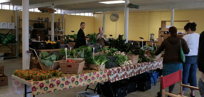 A Sustainable Food One-stop Shop: New Orleans Business Combines Urban Farm and Grocery Store