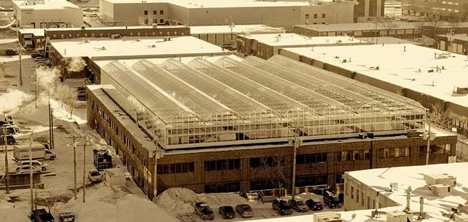 Montreal Hydroponic Farm Raises Rooftops With Produce