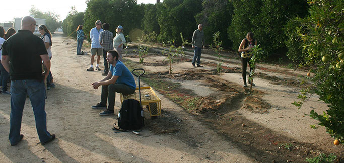 Students Sow Sustainability at UC Riverside Community Garden