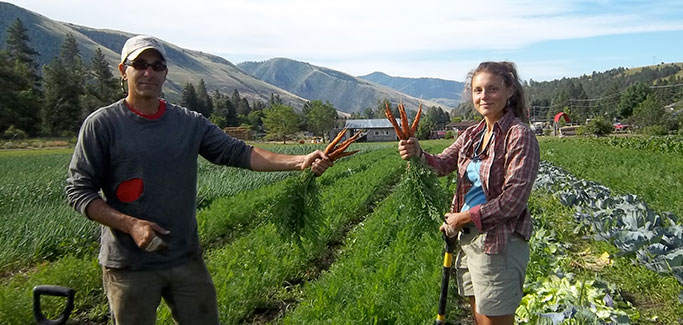 Higher Growing: 12 University Programs in Sustainable Food and Farming