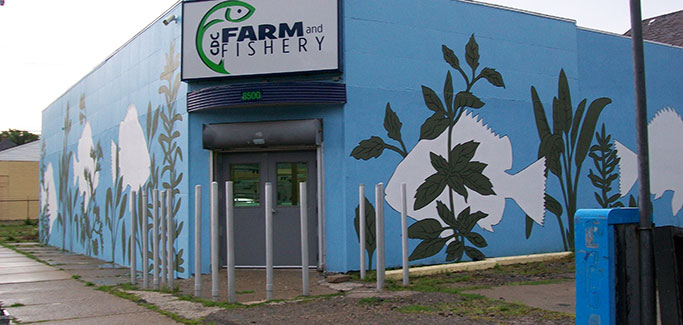 Detroit Aquaponics Business Combines High-Tech Ag, Social Justice Mission