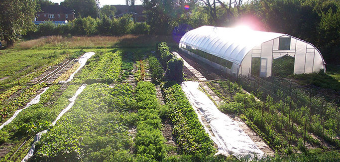 10 American Cities Lead the Way With Urban Agriculture Ordinances