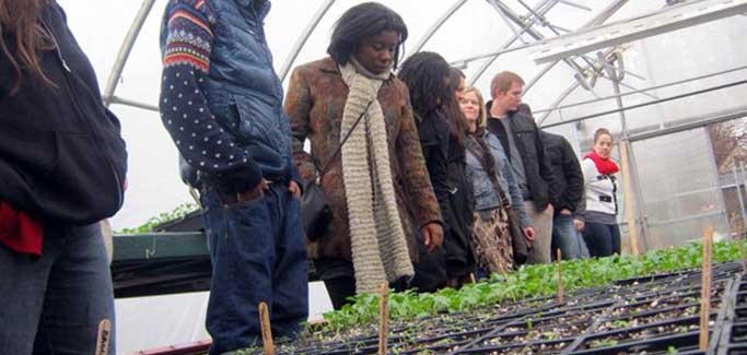 Detroit Food Policy Council Focuses on Protecting City's Existing Farms