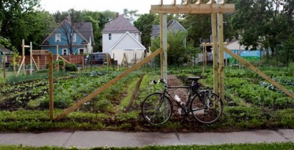 stones throw urban farm feature