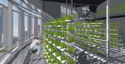 vertical farm blake kurasek