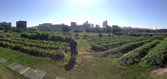 Gateway Greening St. Louis Urban Agriculture Organization