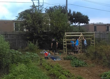 plant-it-forward-urban-farms-houston