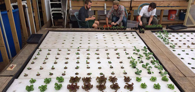 Tiny Texas Startup Has Big Plans to Create Ten-Acre Sustainable Ag Model
