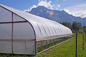 A high tunnel in Alaska's Matanuska-Susitna Valley  USDA/Creative Commons