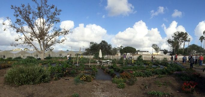 coastal roots farms san diego california urban farm